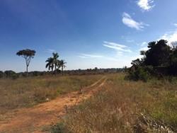 SHIS QL 20 Lago Sul Brasília   BEIRA LAGO! ÁREA VERDE 36.000M2 98404-6262   Ferola!   SHIS QL 20