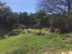 CONDOMINIO QUINTAS DO SOL Jardim Botanico Brasília   Quintas do Sol, lote de 1.000 m²! 99158-8749