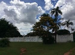 SMPW Quadra 8 Park Way Brasília   SMPW 08 CONDOMÍNIO 8 LOTES + ÁREA VERDE  99126-9022